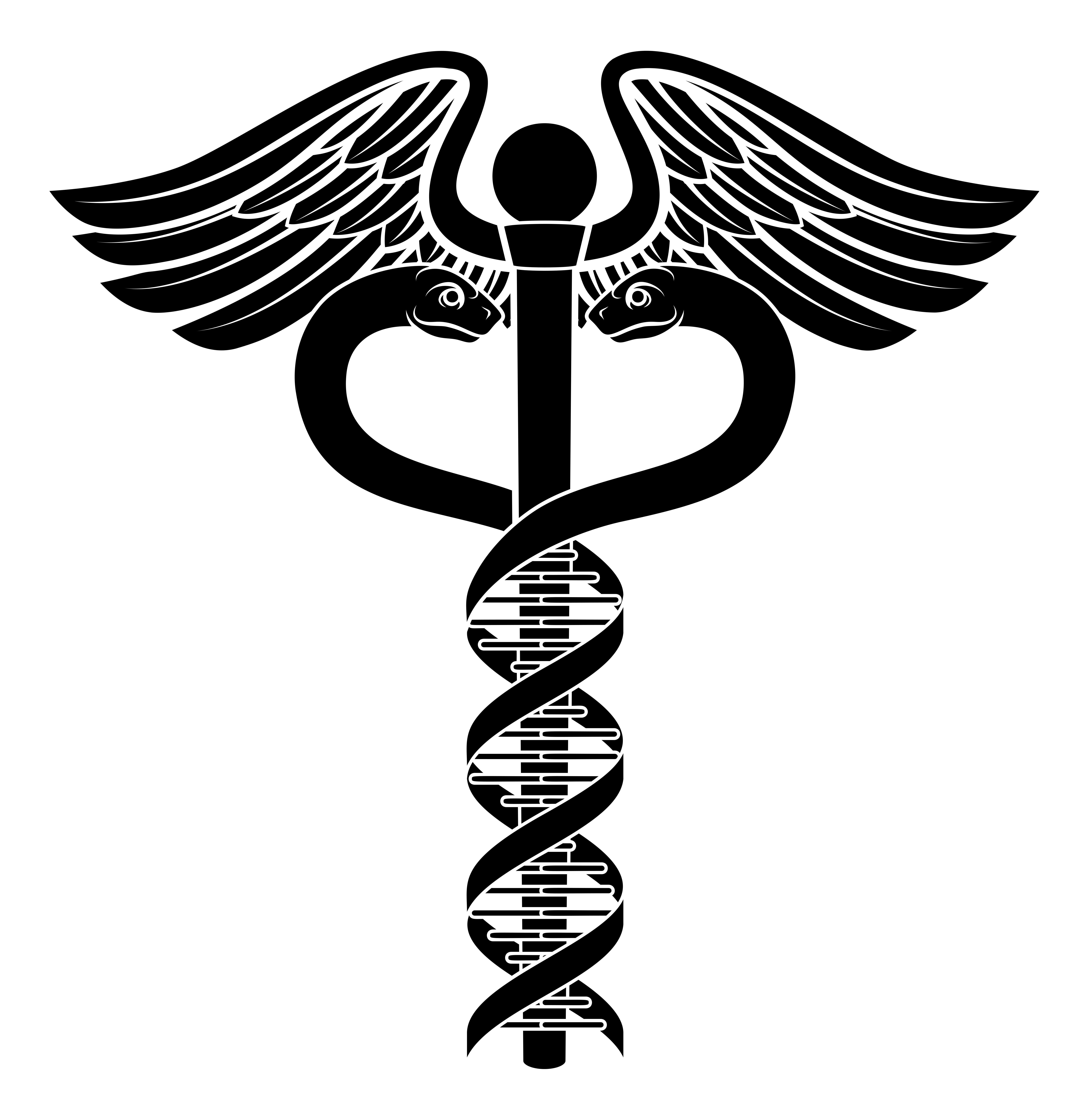 Doctor Snake Logo