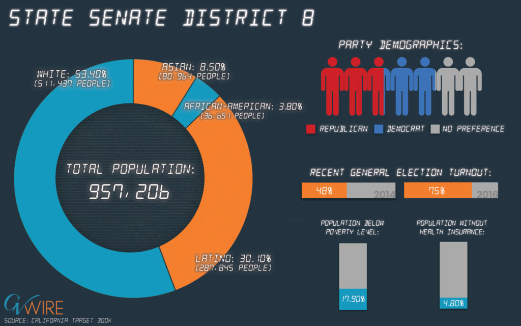 Infographic showing State Senate 8 population demographics