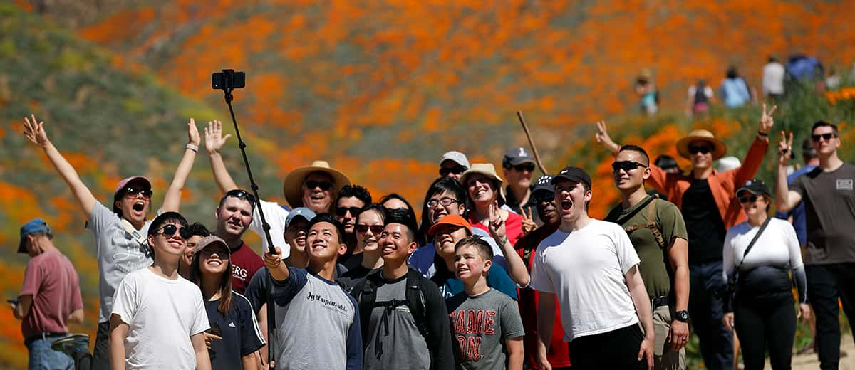 People pose for a picture among the wildflowers blooming at Lake Elsinore in California