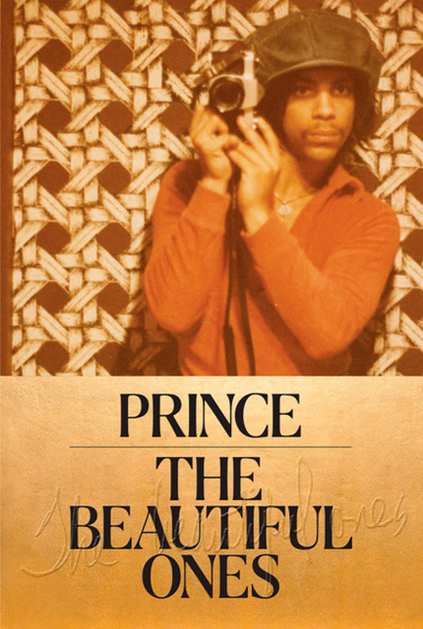 "Photo of the cover of ""The Beautiful Ones"""
