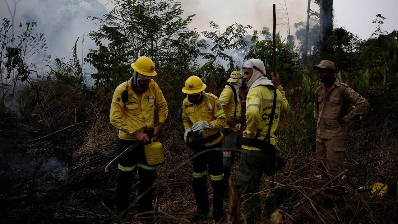 Photo of firefighters in the Jacunda National Forest