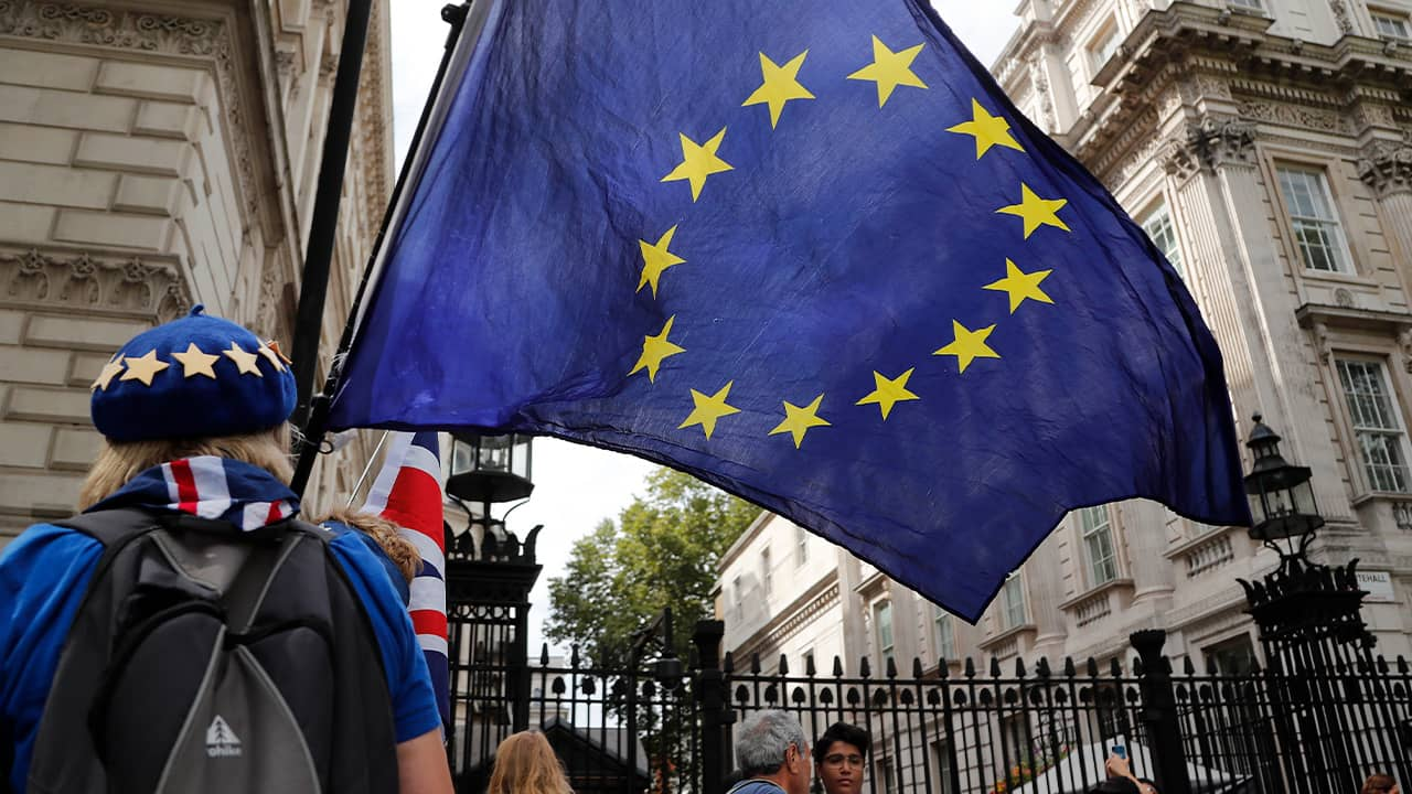 Photo of a pro EU protestor waving a European flag in London