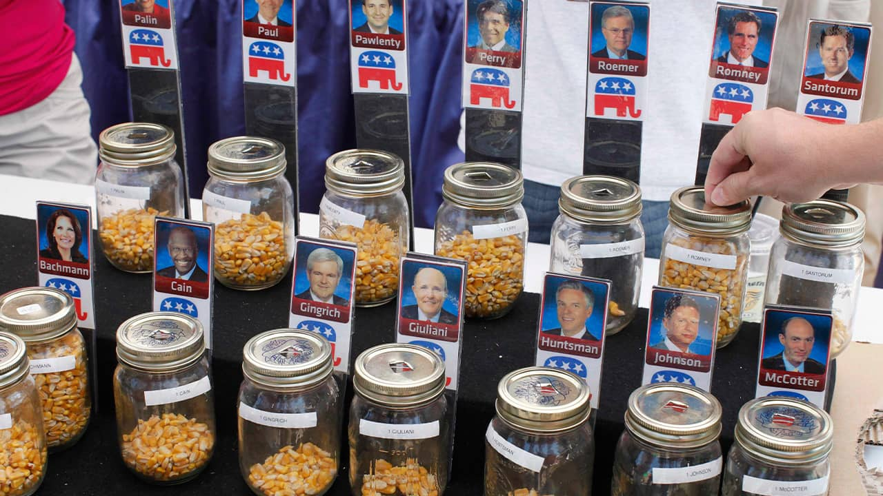 Photo of corn kernel voting