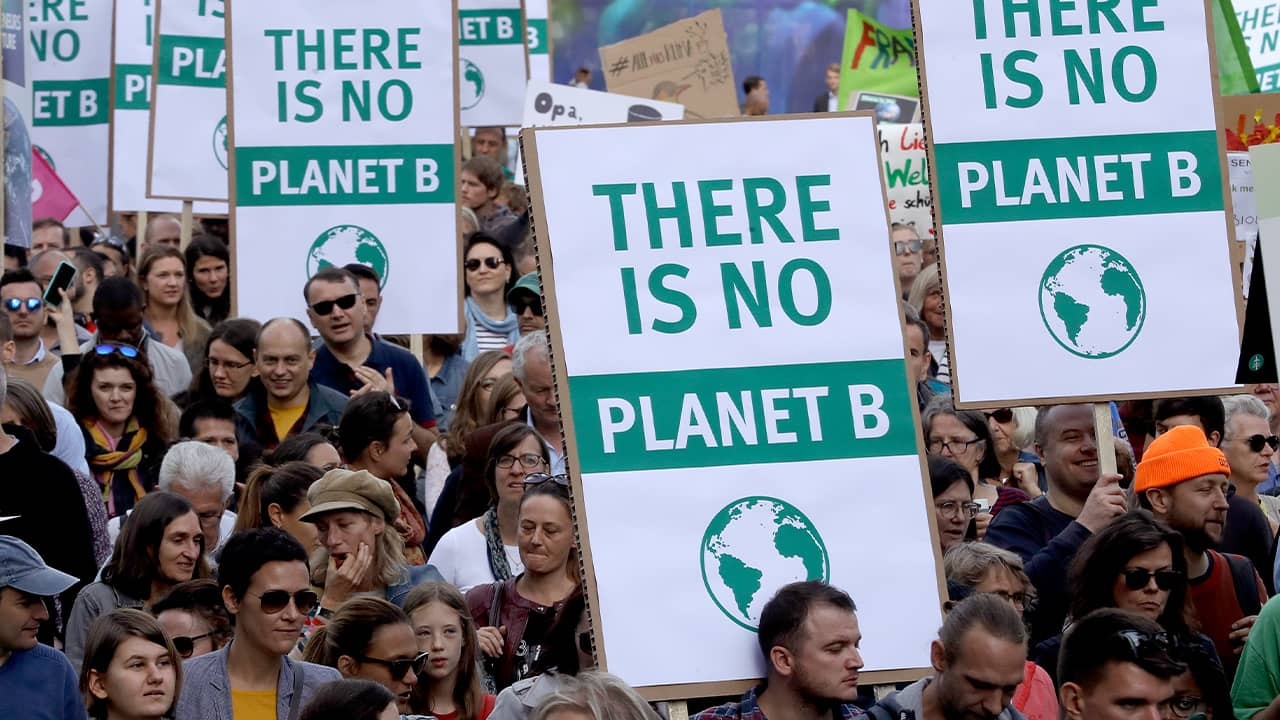 "People attending a ""Fridays for Future"" rally in Germany"