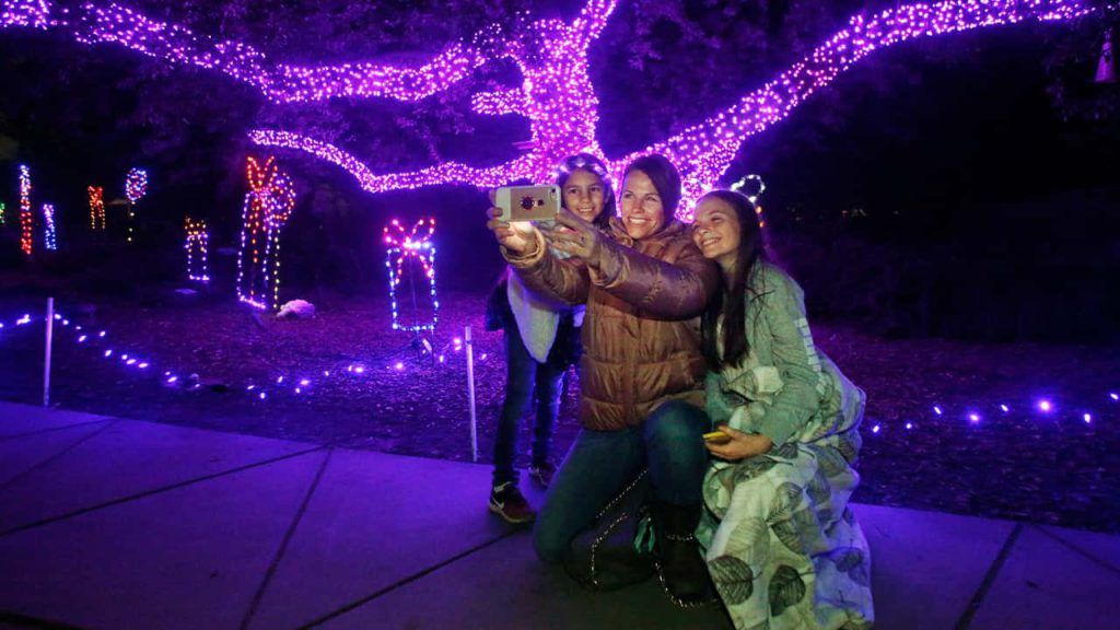 A photo of people enjoying Zoo Lights