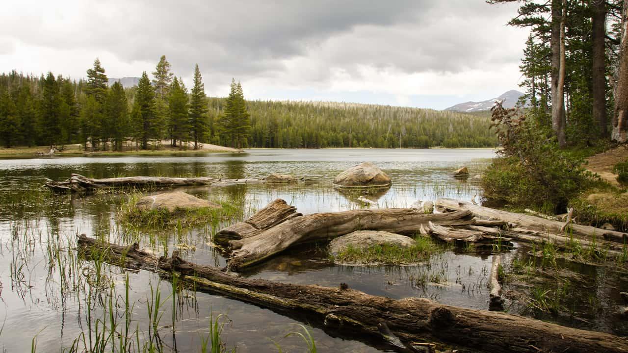 Photo of Dog Lake, Yosemite