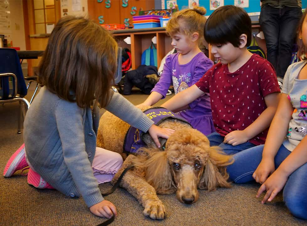 Photo of children with Rudy the therapy dog