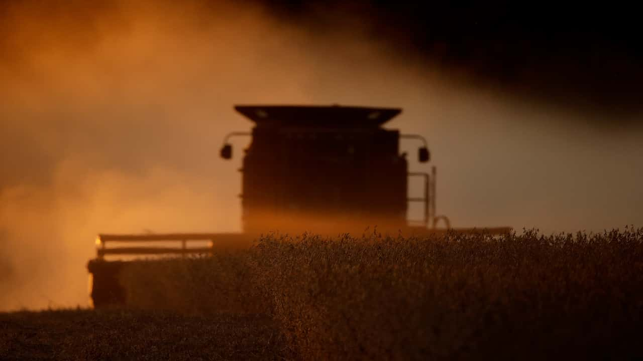 Photo of a tractor harvesting soy beans