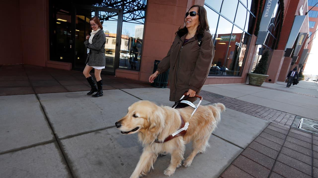 Photo of Yolanda Avila being led by her seeing eye dog